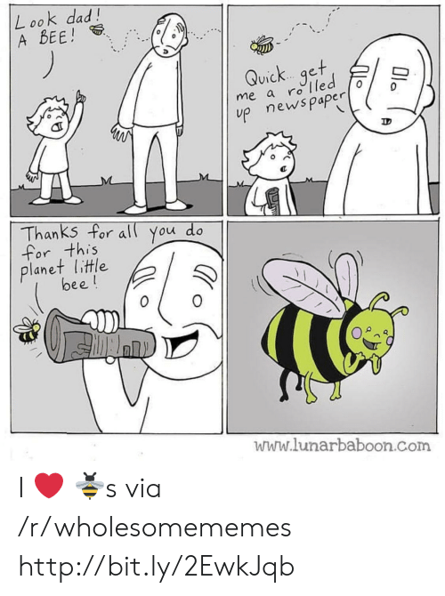 Lunarbaboon: Look dad!  A BEE!  Quick get  me a rolled  p newspaper  Thanks for al You do  for this  planet little  bee!  www.lunarbaboon.com  Ola I ❤️ 🐝s via /r/wholesomememes http://bit.ly/2EwkJqb