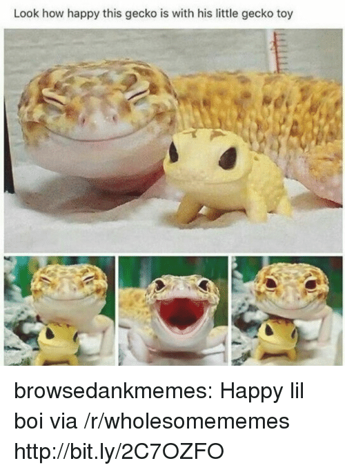 gecko: Look how happy this gecko is with his little gecko toy browsedankmemes:  Happy lil boi via /r/wholesomememes http://bit.ly/2C7OZFO