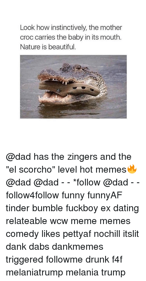 "Hot Memes: Look how instinctively, the mother  croc carries the baby in its mouth.  Nature is beautiful. @dad has the zingers and the ""el scorcho"" level hot memes🔥 @dad @dad - - *follow @dad - - follow4follow funny funnyAF tinder bumble fuckboy ex dating relateable wcw meme memes comedy likes pettyaf nochill itslit dank dabs dankmemes triggered followme drunk f4f melaniatrump melania trump"