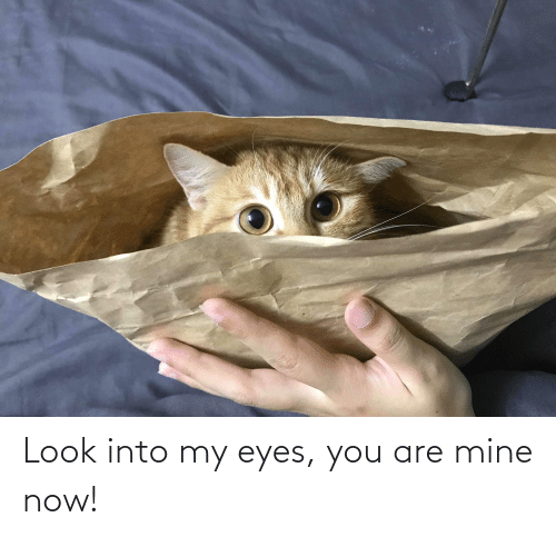 Mine Now: Look into my eyes, you are mine now!