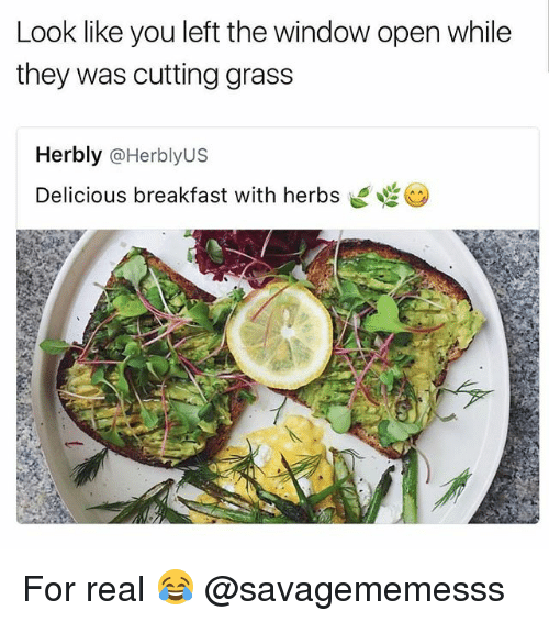 Memes, Breakfast, and 🤖: Look like you left the window open while  they was cutting grass  Her bly  @Her bly US  Delicious breakfast with herbs For real 😂 @savagememesss