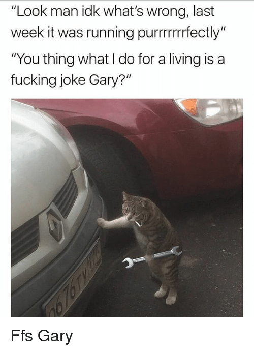 "Fucking, Memes, and Living: ""Look man idk what's wrong, last  week it was running purrrrrfectly""  ""You thing what I do for a living is a  fucking joke Gary?"" Ffs Gary"