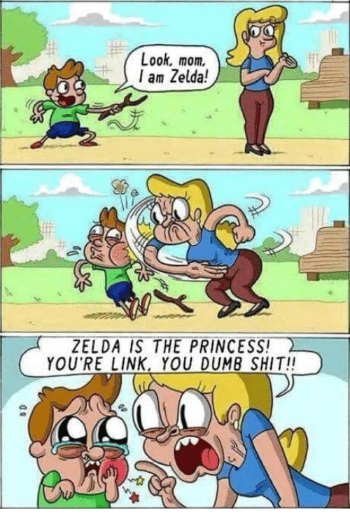 Funny, Shit, and Link: Look, mom.  am Zelda!  ZELDA İS THE-PRINCESS!  YOU RE LINK, YOU DUM8 SHIT!!