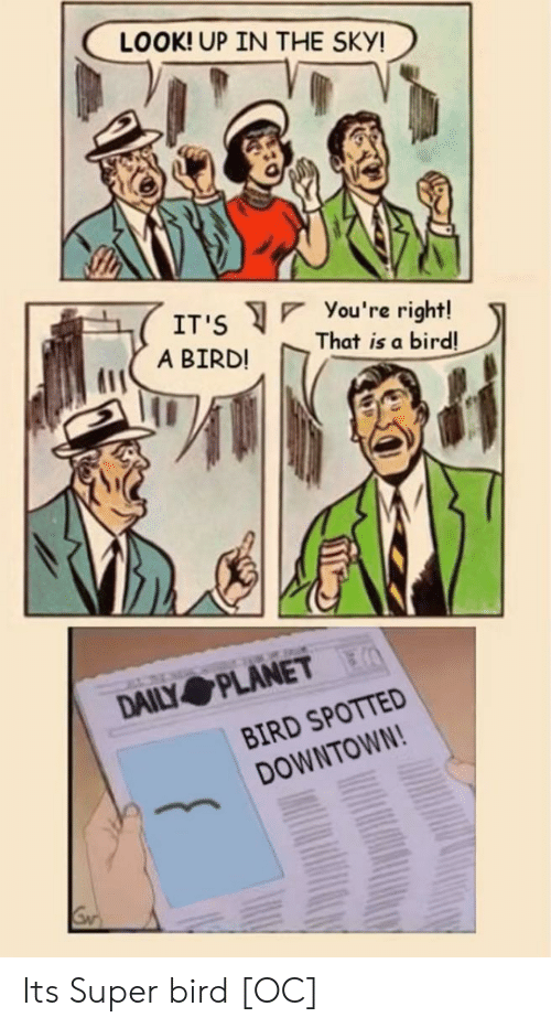 you re: LOOK! UP IN THE SKY!  You 're right!  That is a bird!  IT'S  A BIRD!  DAILY PLANET  BIRD SPOTTED  DOWNTOWN! Its Super bird [OC]