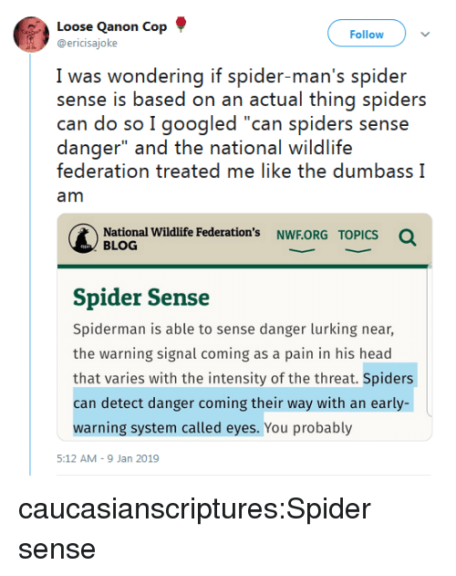 "Lurking: Loose Qanon Cop  @ericisajoke  Follow  I was wwondering if spider man's spider  sense is based on an actual thing spiders  can do so I googled ""can spiders sense  danger"" and the national wildlife  federation treated me like the dumbass I  am  National Wildlife Federation's NWF.ORG  Q  TOPICS  BLOG  Spider Sense  Spiderman is able to sense danger lurking near,  the warning signal coming as a pain in his head  that varies with the intensity of the threat. Spiders  can detect danger coming their way with an early-  warning system called eyes. You probably  5:12 AM-9 Jan 2019 caucasianscriptures:Spider sense"