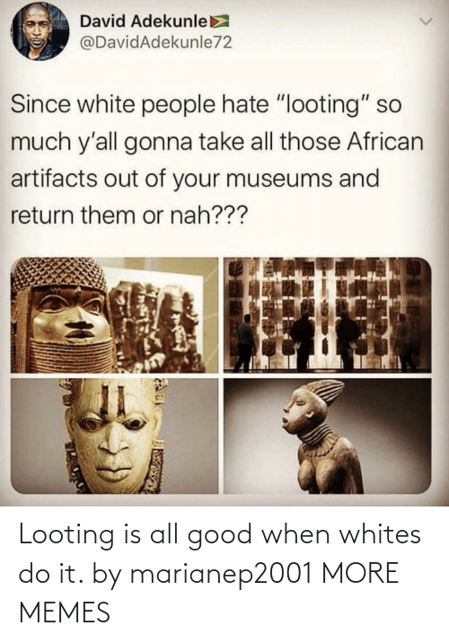 do it: Looting is all good when whites do it. by marianep2001 MORE MEMES