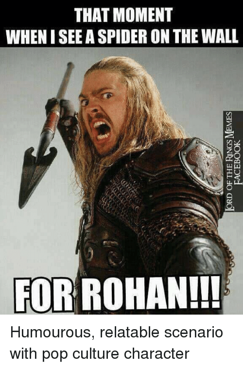 Facebook, Meme, and Memes: LORD OF THE RINGS MEMES  FACEBOOK  THAT MOMENT  WHEN I SEE A SPIDER ON THE WALL  FOR ROHAN!! Humourous, relatable scenario with pop culture character