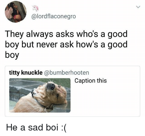 Memes, Good, and Sad: @lordflaconegro  They always asks who's a good  boy but never ask how's a good  boy  titty knuckle @bumberhootern  Caption this He a sad boi :(