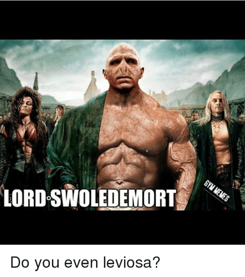 Gym: LORDOSWOLEDEMORT Do you even leviosa?