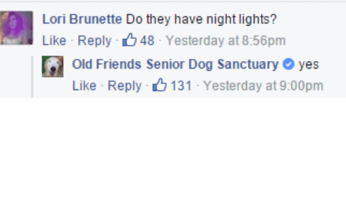 old friends: Lori Brunette Do they have night lights?  Like Reply 48-Yesterday at 8:56pm  Old Friends Senior Dog Sanctuary yes  Like Reply 131-Yesterday at 9:00pm