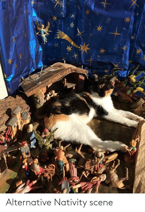 nativity: LORIP  ЛО Alternative Nativity scene