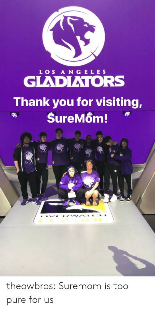 Too Pure: LOS A N GELE S  GLADIATORS  Thank you for visiting, theowbros:  Suremom is too pure for us