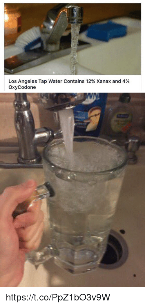 Memes, Xanax, and Los Angeles: Los Angeles Tap Water Contains 12% Xanax and 4%  OxyCodone https://t.co/PpZ1bO3v9W