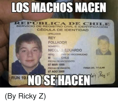 Memes, Rey, and Run: LOS MACHOS NACEN  EPUBLICA DE CHILE  SERVICIO DE REGISTRO CIVIL E IDENTIFICACIÓN  C DULA DE IDENTIDAD  APELLIC00S  REY  FOLLADOR  NICOLAS EDUARDO  CHILE  07 MAR 1995  FECHA DE EMIGION  07 AGO 2008  FIRMA DE TTULAR  NO SE HACEN  RUN 19 (By Ricky Z)