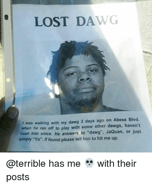 """Dawgs: LOST DAWG  I was walking with my dawg 2 days ago on Abess Blvd.  when he ran off to play with some other dawgs, haven't  seen him since. He answers to """"dawg"""", JaQuan, or just  simply """"Yo"""". If found please tell him to hit me up. @terrible has me 💀 with their posts"""