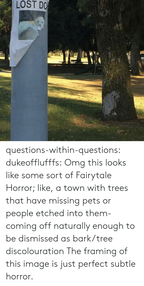 fairytale: LOST DO questions-within-questions:  dukeofflufffs: Omg this looks like some sort of Fairytale Horror; like, a town with trees that have missing pets or people etched into them- coming off naturally enough to be dismissed as bark/tree discolouration The framing of this image is just perfect subtle horror.