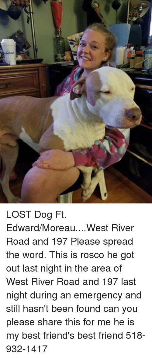 Friends Best Friend: LOST Dog Ft. Edward/Moreau....West River Road and 197  Please spread the word.  This is rosco he got out last night in the area of West River Road and 197 last night during an emergency and still hasn't been found can you please share this for me he is my best friend's best friend  518-932-1417