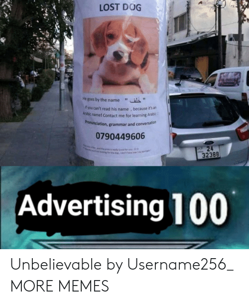 """Arabic: LOST DOG  He goes by the name""""  f you can't read his name , because it's an  Arabic name! Contact me for learning Arabic:  ronunciation, grammar and conversation  Pr  0790449606  32388  Advertising 100 Unbelievable by Username256_ MORE MEMES"""