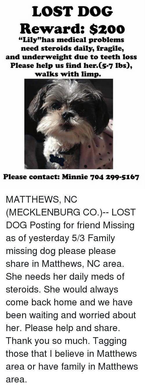 "Bailey Jay, Family, and Memes: LOST DOG  Reward: $200  ""Lily""has medical problems  need steroids daily, fragile,  and underweight due to teeth loss  Please help us find her. 5-7 lbs  walks with limp.  Please contact: Minnie 704 299 5167 MATTHEWS, NC (MECKLENBURG CO.)-- LOST DOG  Posting for friend  Missing as of yesterday 5/3 Family missing dog please please share in Matthews, NC area. She needs her daily meds of steroids. She would always come back home and we have been waiting and worried about her. Please help and share. Thank you so much. Tagging those that I believe in Matthews area or have family in Matthews area."
