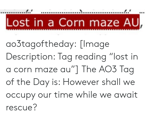 """maze: Lost in a Corn maze AU ao3tagoftheday:  [Image Description: Tag reading """"lost in a corn maze au""""]  The AO3 Tag of the Day is: However shall we occupy our time while we await rescue?"""