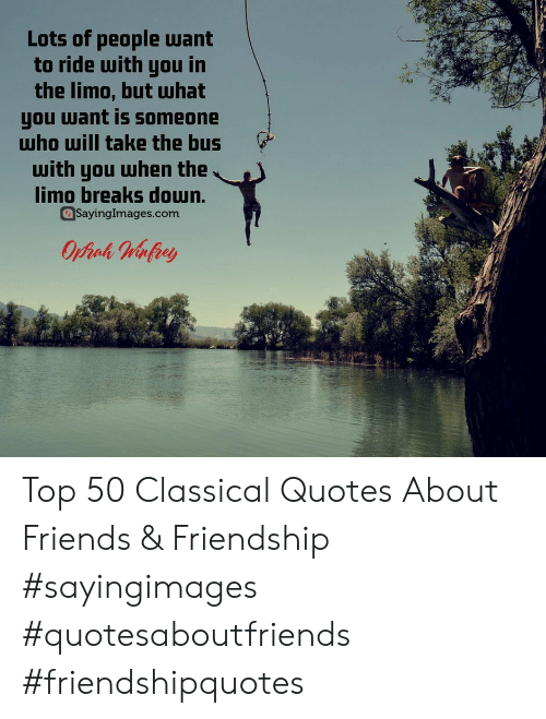 Quotes About: Lots of people want  to ride with you in  the limo, but Шhat  you want is someone  who will take the bus  with you when the  limo breaks doun.  Sayinglmages.com Top 50 Classical Quotes About Friends & Friendship #sayingimages #quotesaboutfriends #friendshipquotes