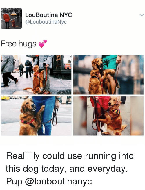 free hugs: LouBoutina NYC  @LouboutinaNyc  Free hugs Realllllly could use running into this dog today, and everyday. Pup @louboutinanyc