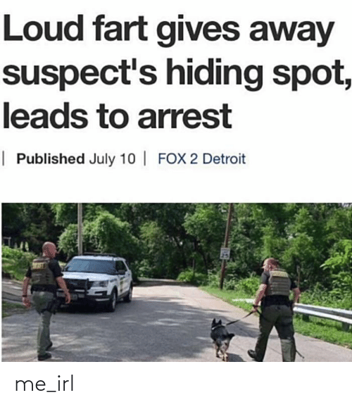 july: Loud fart gives away  suspect's hiding spot,  leads to arrest  | Published July 10 | FOX 2 Detroit me_irl