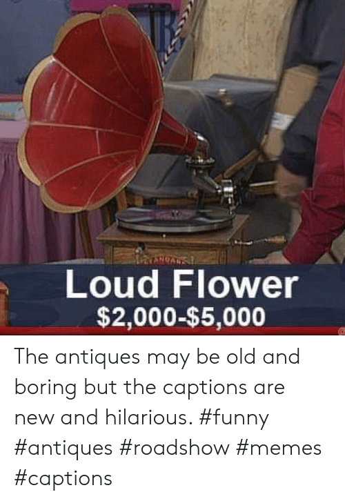 antiques roadshow: Loud Flower  $2,000-$5,000 The antiques may be old and boring but the captions are new and hilarious. #funny #antiques #roadshow #memes #captions