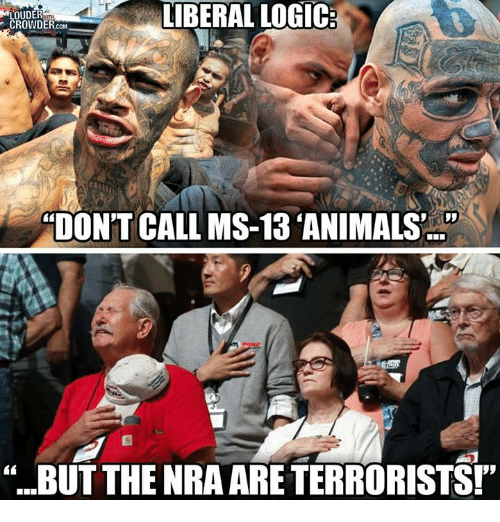"Animals, Logic, and Memes: LOUDER  CROWDER.coM  IBERAL LOGIC  TON'T CALL MS-13 ANIMALS'  ""BUT THE NRA ARE TERRORISTS!"""