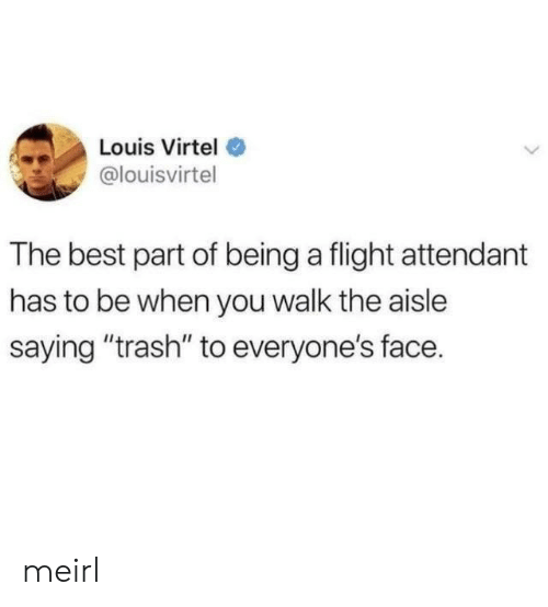 "Flight Attendant: Louis Virtel  @louisvirtel  The best part of being a flight attendant  has to be when you walk the aisle  saying ""trash"" to everyone's face. meirl"