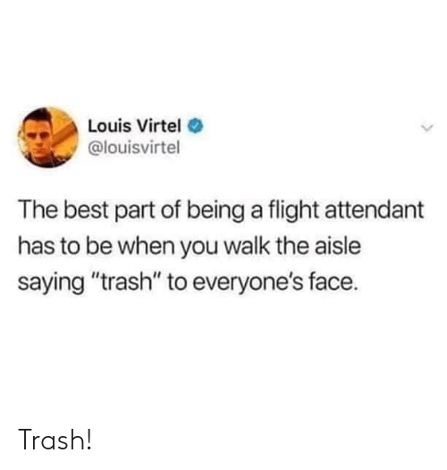 "Flight Attendant: Louis Virtel  @louisvirtel  The best part of being a flight attendant  has to be when you walk the aisle  saying ""trash"" to everyone's face. Trash!"