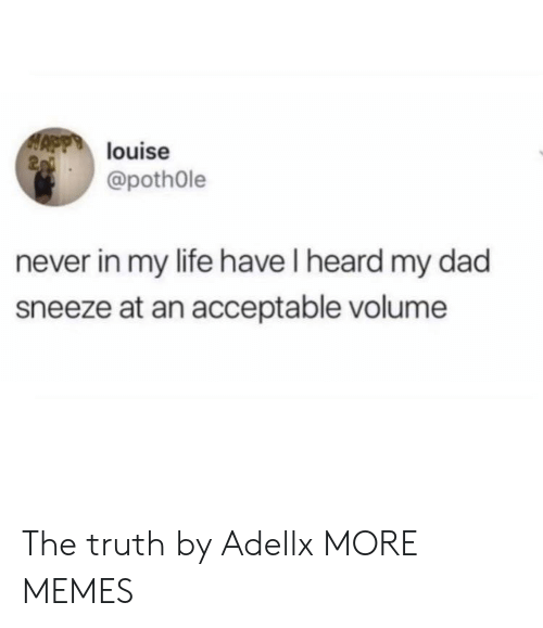 Pothole: louise  2  @pothOle  never in my life have I heard my dad  sneeze at an acceptable volume The truth by Adellx MORE MEMES