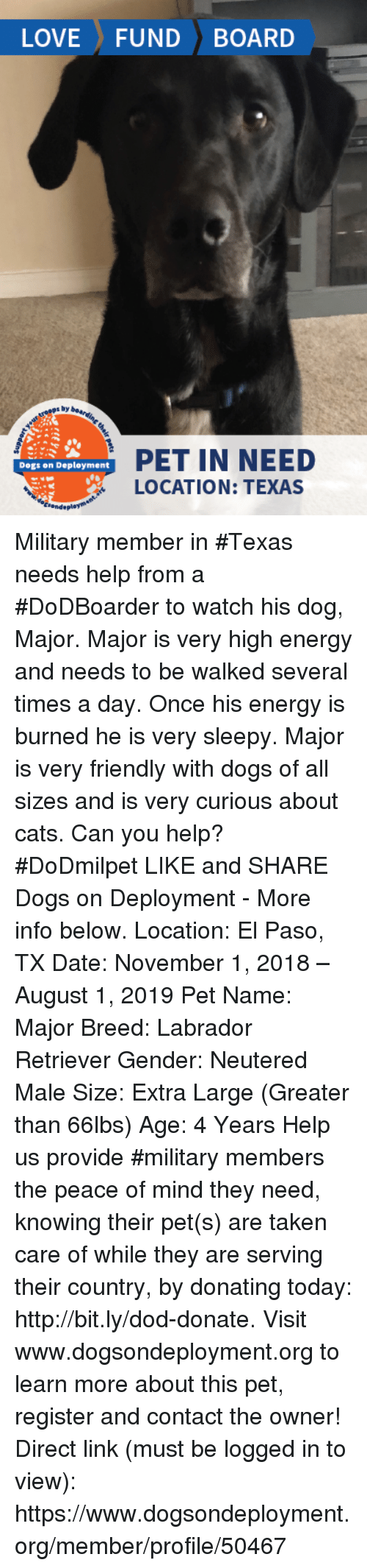 Cats, Dogs, and Energy: LOVE FUND BOARD  s by  PET IN NEED  LOCATION: TEXAS  Dogs on Deployment Military member in #Texas needs help from a #DoDBoarder to watch his dog, Major.  Major is very high energy and needs to be walked several times a day. Once his energy is burned he is very sleepy. Major is very friendly with dogs of all sizes and is very curious about cats. Can you help? #DoDmilpet   LIKE and SHARE Dogs on Deployment - More info below.   Location: El Paso, TX Date: November 1, 2018 – August 1, 2019  Pet Name: Major Breed: Labrador Retriever Gender: Neutered Male Size: Extra Large (Greater than 66lbs) Age: 4 Years  Help us provide #military members the peace of mind they need, knowing their pet(s) are taken care of while they are serving their country, by donating today: http://bit.ly/dod-donate.   Visit www.dogsondeployment.org to learn more about this pet, register and contact the owner!  Direct link (must be logged in to view): https://www.dogsondeployment.org/member/profile/50467