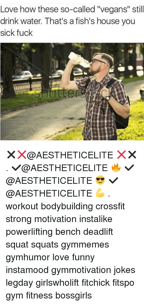 """Gym, Crossfit, and Drinking Water: Love how these so-called """"vegans"""" still  drink water. That's a fish's house you  sick fuck ✖❌@AESTHETICELITE ❌✖ . ✔@AESTHETICELITE 🔥 ✔@AESTHETICELITE 😎 ✔@AESTHETICELITE 💪 . workout bodybuilding crossfit strong motivation instalike powerlifting bench deadlift squat squats gymmemes gymhumor love funny instamood gymmotivation jokes legday girlswholift fitchick fitspo gym fitness bossgirls"""