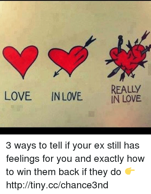 how to tell if your love is Main navigation how to tell if it's love  love is an intense feeling of affection toward another person it's a profound and caring attraction that forms emotional attachment on the flip side, lust is a strong desire of a sexual nature that is based on physical attraction.