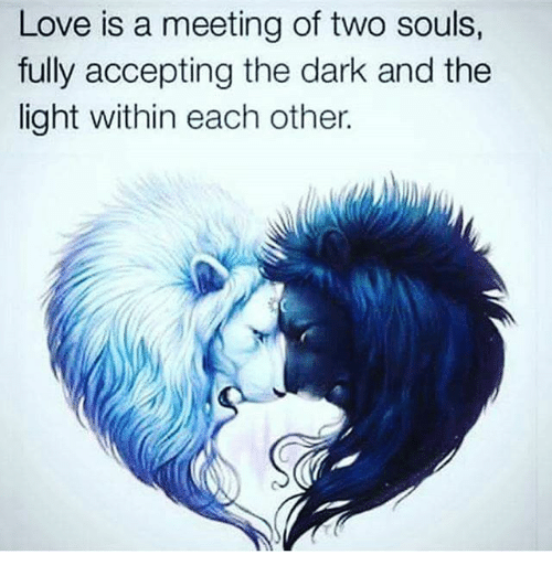 Love Each Other When Two Souls: 25+ Best Memes About Lights
