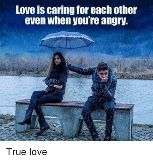 Love, Memes, and True: Love IS caring for each other  even when you're angry. True love