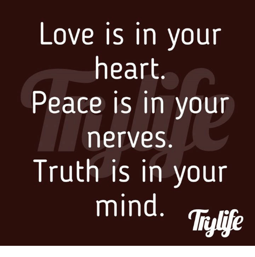 memes: Love is in your  heart  Peace is in your  merves  Truth is in your  mind