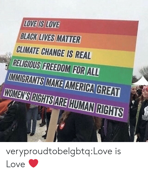 Black Lives Matter: LOVE IS LOVE  BLACK LIVES MATTER  CLIMATE CHANGE IS REAL  RELIGIOUS FREEDOM FOR ALL  WOMEN'S RIGHTS ARE HUMAN RIGHTS veryproudtobelgbtq:Love is Love ❤️