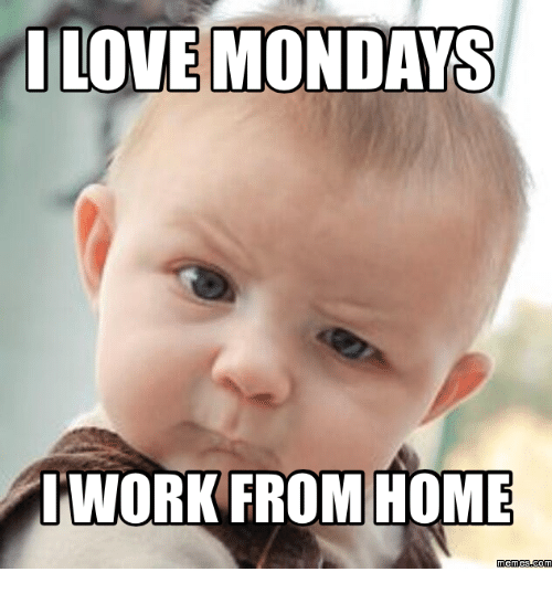 Work From Home Meme: LOVE MONDAYS  WORK FROM HOME  memes Coma