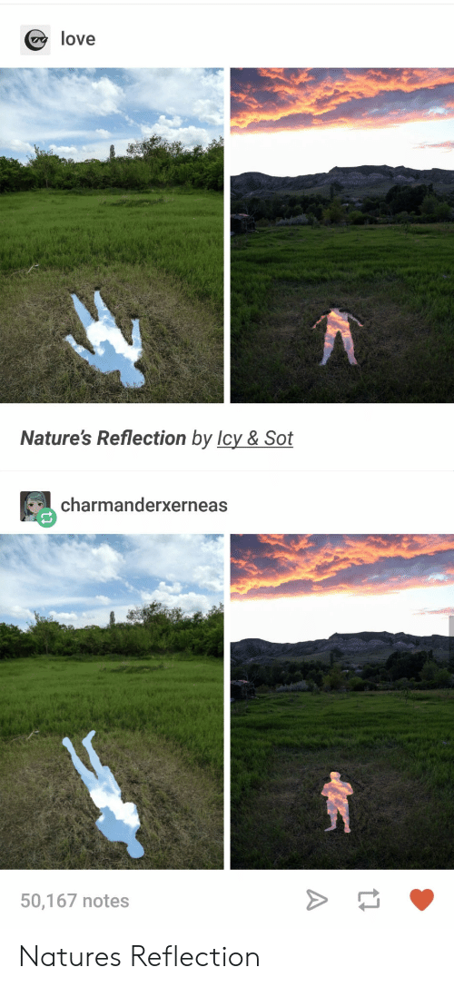 sot: love  Nature's Reflection by Icy & Sot  charmanderxerneas  50,167 notes Natures Reflection