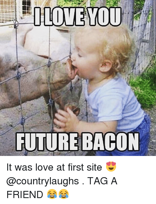 Memes, 🤖, and Sites: LOVE YOU  FUTURE BACON It was love at first site 😍 @countrylaughs . TAG A FRIEND 😂😂