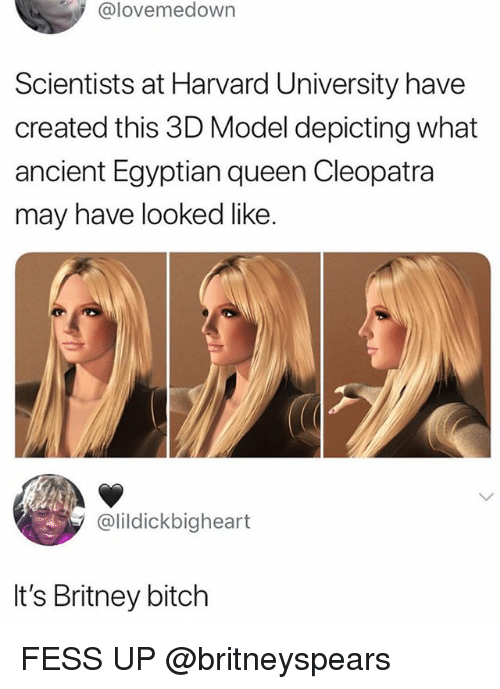 Bitch, Funny, and Harvard University: @lovemedown  Scientists at Harvard University have  created this 3D Model depicting what  ancient Egyptian queen Cleopatra  may have looked like  @lildickbigheart  It's Britney bitch FESS UP @britneyspears