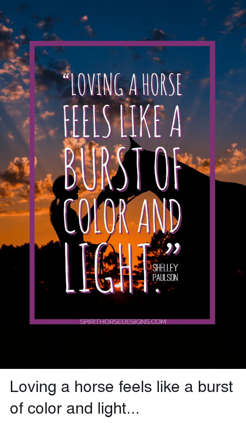 Horse, Light, and Color: LOVING A HORSE  EIS TKE A  COLOR AND  SHELLEY  PAULSON Loving a horse feels like a burst of color and light...