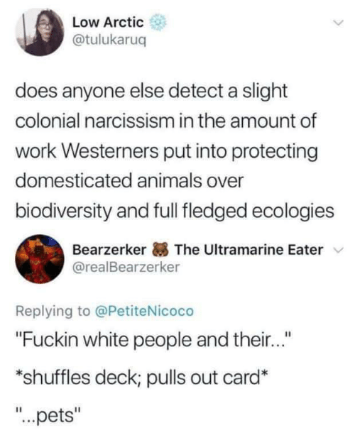 """domesticated: Low Arctic  @tulukaruq  does anyone else detect a slight  colonial narcissism in the amount of  work Westerners put into protecting  domesticated animals over  biodiversity and full fledged ecologies  Bearzerker The Ultramarine Eater  @realBearzerker  Replying to @PetiteNicoco  """"Fuckin white people and their...""""  *shuffles deck; pulls out card*  """"...pets"""""""