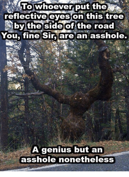 You Fine: lowhoever put the  reflective eyeson this tree  bylthe side of the road  You, fine Sir are an asshole,  A genius but an  asshole nonetheless