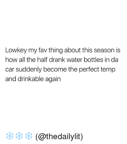 Funny, Lowkey, and Water Bottle: Lowkey my fav thing about this season is  how all the half drank water bottles in da  car suddenly become the perfect temp  and drinkable again ❄️❄️❄️ (@thedailylit)