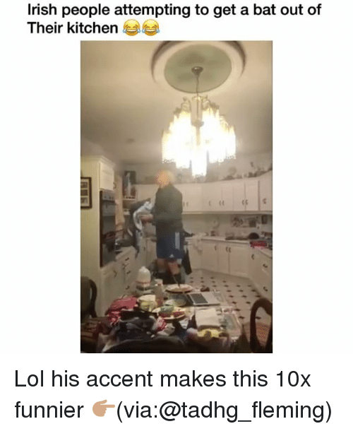 Funny, Lol, and Bat: lrish people attempting to get a bat out of  Their kitchen Lol his accent makes this 10x funnier 👉🏽(via:@tadhg_fleming)