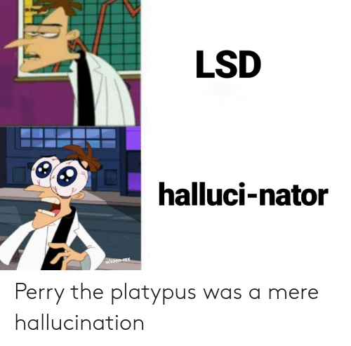 lsd: LSD  halluci-nator  u/saen-rex Perry the platypus was a mere hallucination