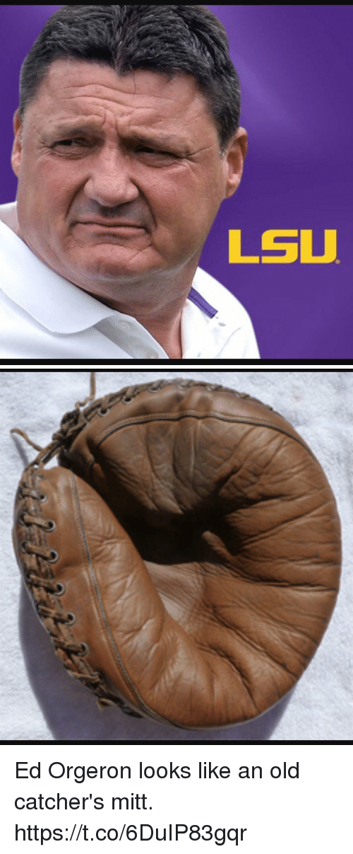 Sports, Old, and Lsu: LSU Ed Orgeron looks like an old catcher's mitt. https://t.co/6DuIP83gqr